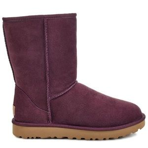 Winter MUST HAVE! Classic Short Plum UGG Boots
